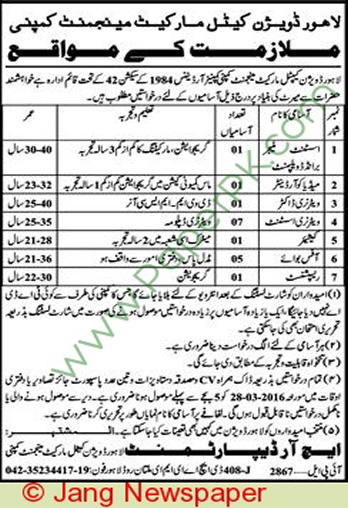 Lahore-Division-Cattle-Market-Management-Company-Lahore-Jobs